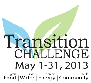 Transition-Challenge-Logo